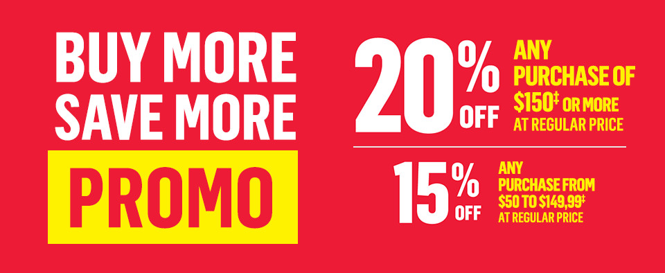buy more save more promo